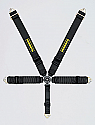 Schroth Racing Profi III-5 Harness