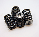 GSC Power-Division TURBO Beehive Spring Set Infiniti G35 2007-08