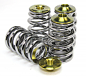 GSC Power-Division Beehive Spring set with Ti Retainer Nissan GT-R 2009-17