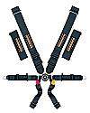 Schroth Racing Hybrid II Titanium Harness