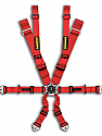 Schroth Racing Profi II-Y Harness